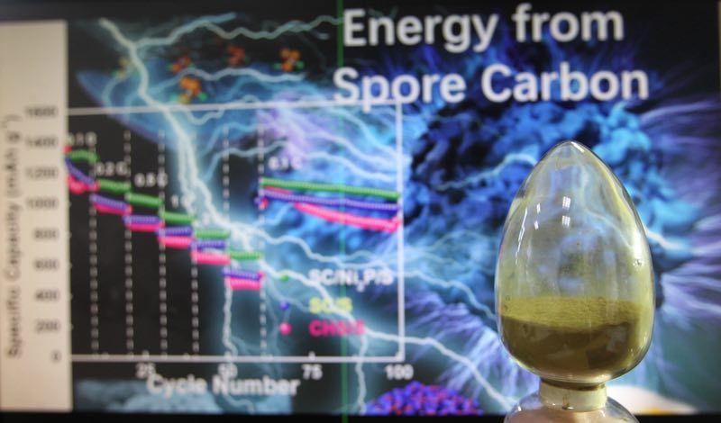 然后通过镍的造孔能力将其结构优化,再经过高温碳化后,产生霉菌孢子碳